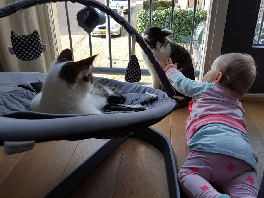 Mirthe-met-de-katten