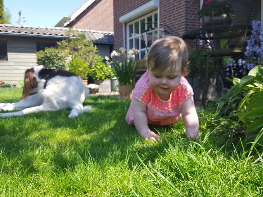 De-tuin-ontdekken